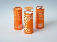 Packaging 3D model of carton can Cartocan 250ml
