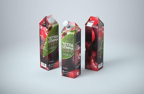 Premium Packaging 3d model of Tetra Pak Gemina Square 1000ml with StreamCap opening