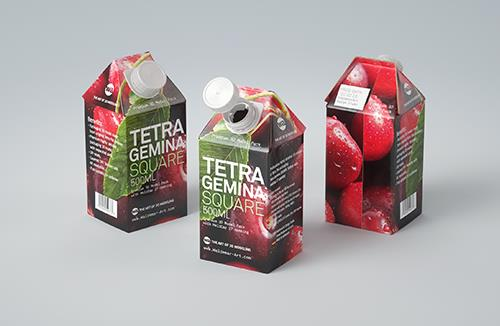 Premium 3D model of Tetra Pak Gemina Square 500ml with HeliCap 27 closure