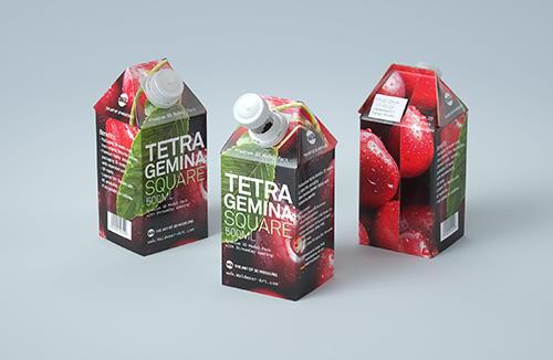 3D model pak of Tetra Pack Gemina Square 500ml package with StreamCap opening